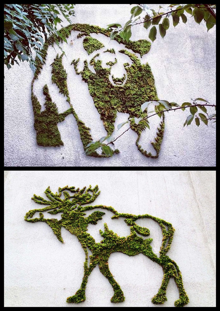 animaux-eco-street-art-vegetal-tutoriel-francais-comment-faire.jpg