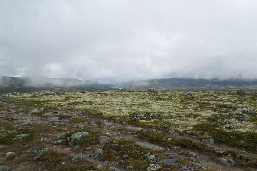 Le plateau au retour, il n'y avait presque plus de brume.