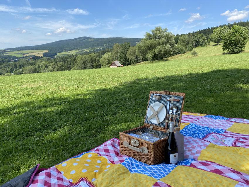 Piknikas ant žolės