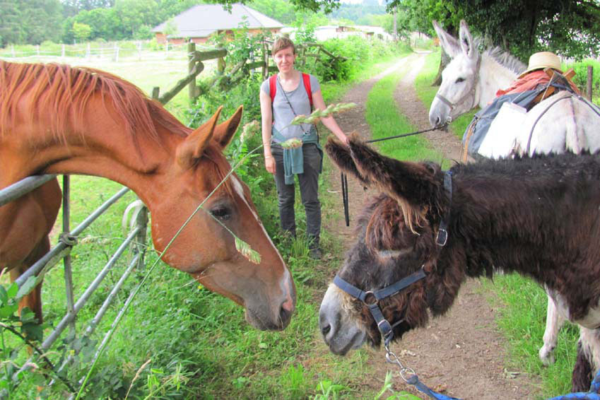 hiking with a donkey in france