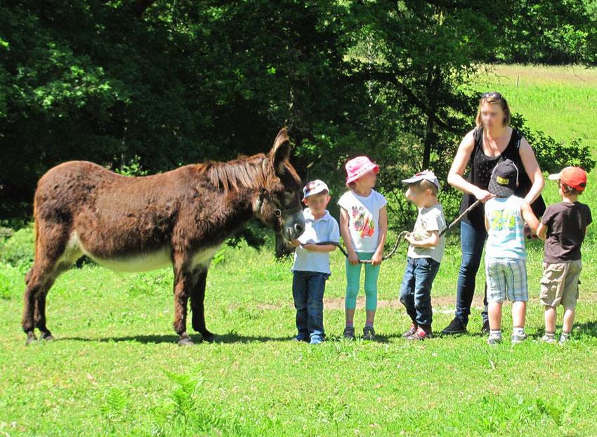 ferme pédagogique et sorties scolaires en Limousin