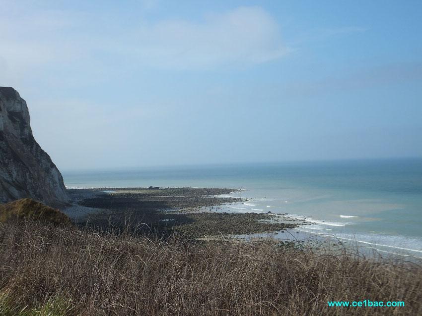 Sur la falaise, Berneval St Martin-en-Campagne