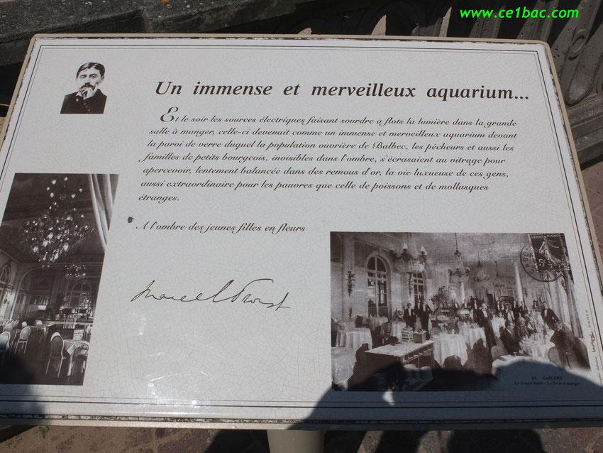 Un immense et merveilleux aquarium... Marcel Proust