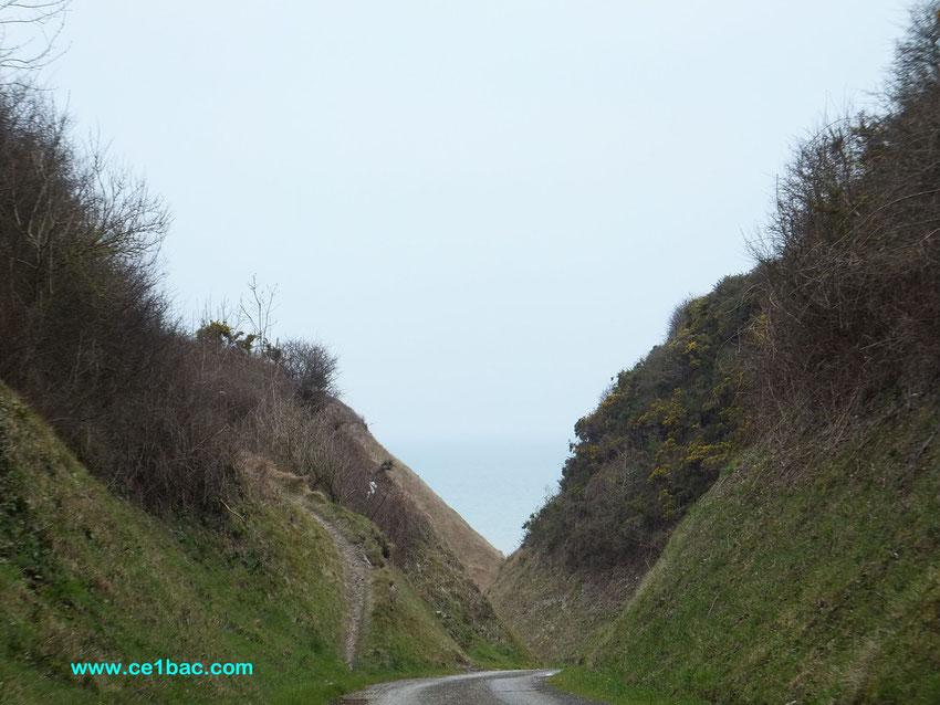 sentier entre Belleville et Berneval