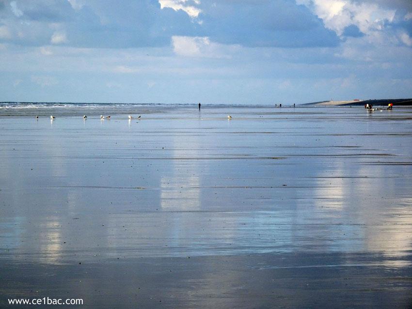 Reflets sur le sable à marée basse