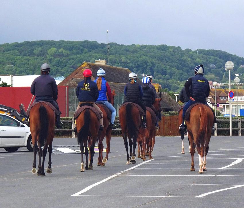 Les chevaux de Deauville