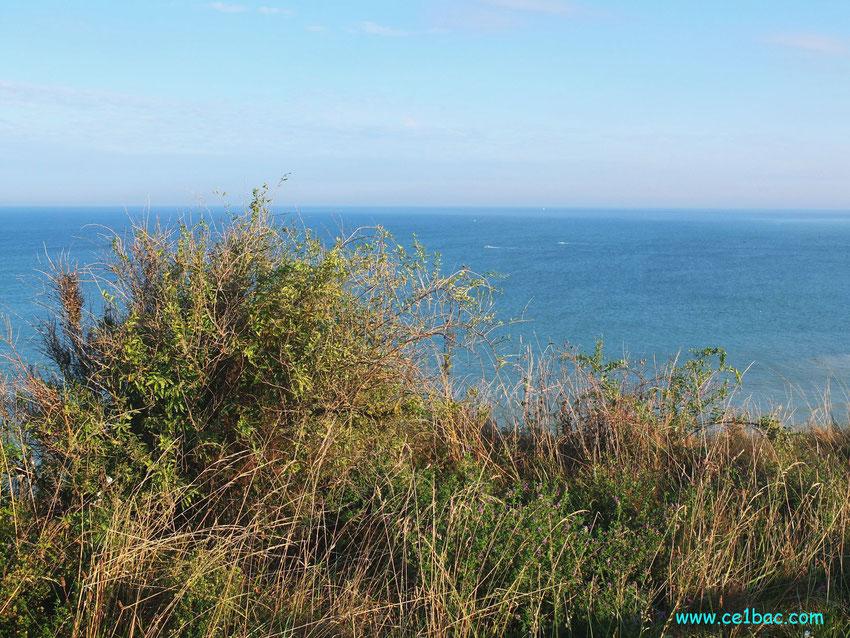 Sur la falaise côte picarde Onival