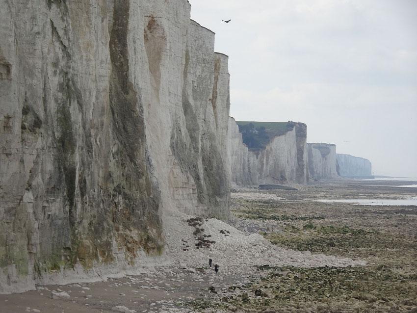 Marée basse à Ault