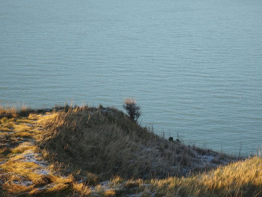 Soleil et givre en janvier, près de Mesnil-Val