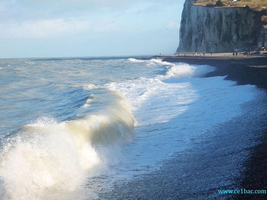 vagues au pied des falaises