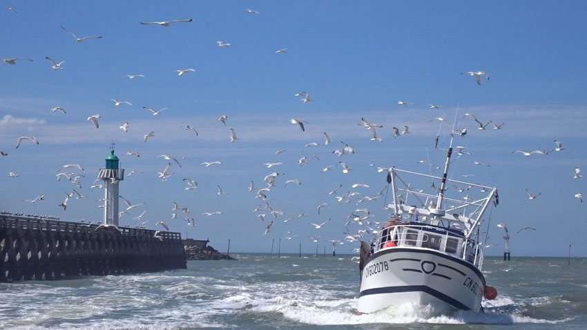 L'entrée du port Deauville Trouville sur mer