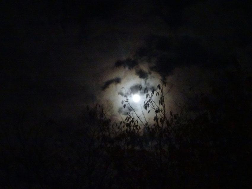 Voici que décline la lune lasse vers son lit de mer étale