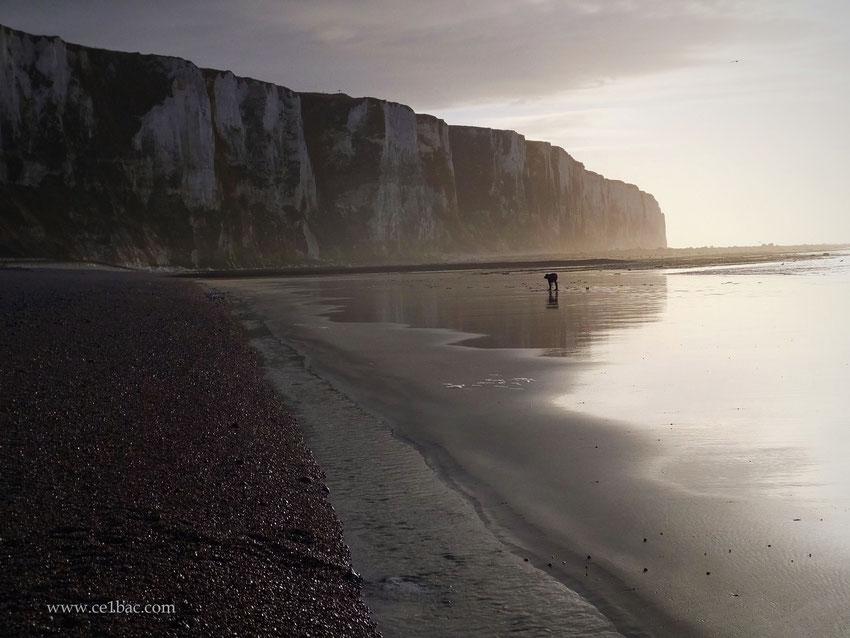 Coucher de soleil à marée basse