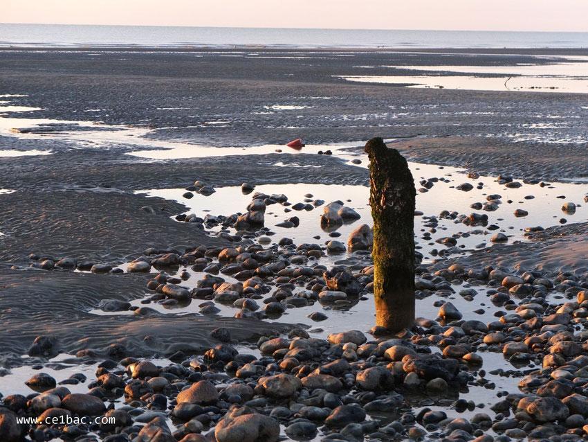 Marée basse à Onival, vestige d'une ancienne digue