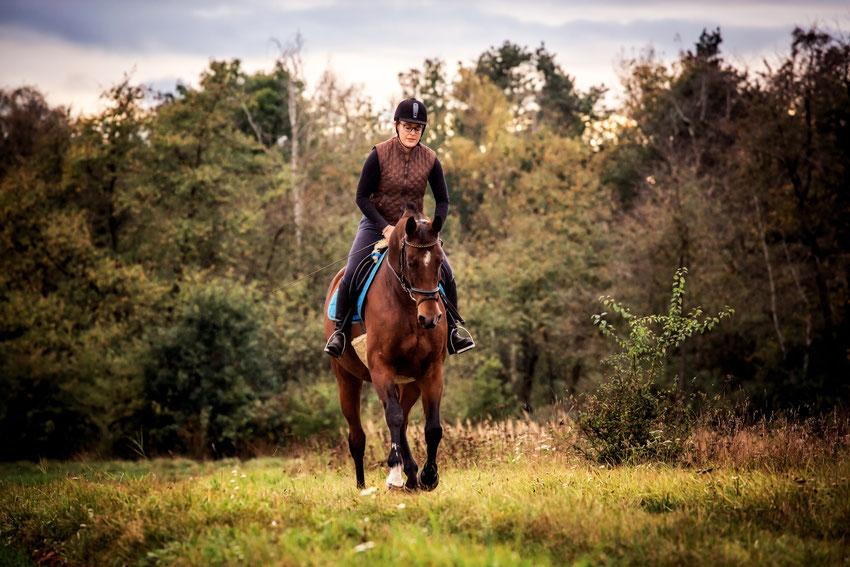 unabhängige Fütterungsberaterin mit Pferd im Galopp Anne Stein