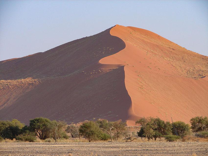 Die Dünen der Namib sind wirklich sehenswert.