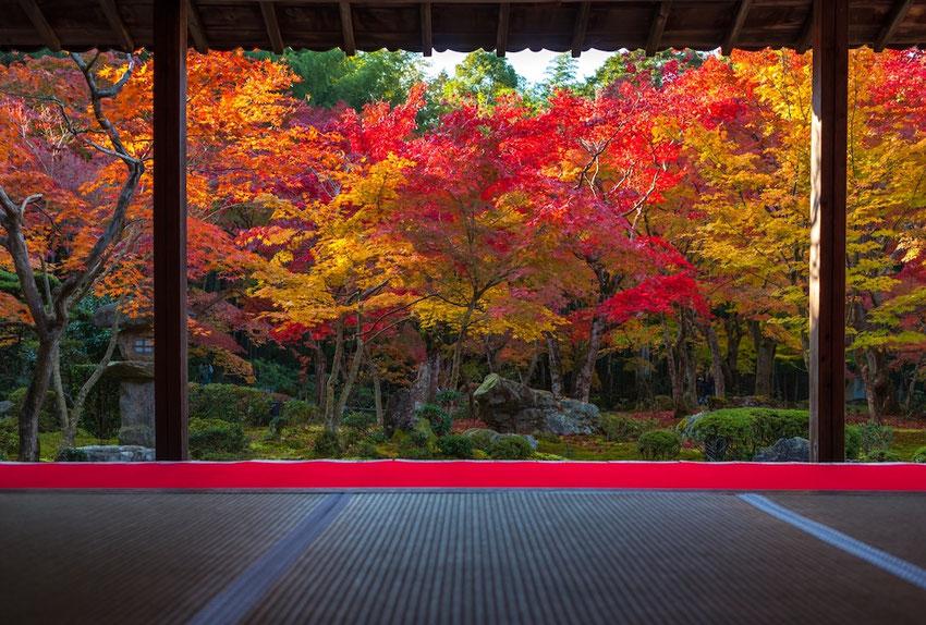 文豪である夏目漱石が参禅したお寺