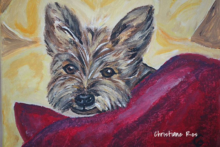 gemaltes Bild Yorkshire Terrier © Christiane Ros