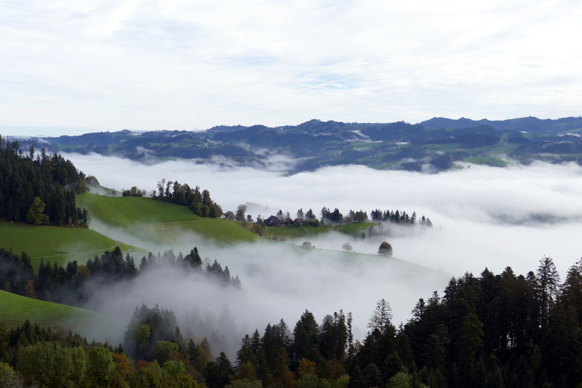 Landscape in the Mist - typical of the Emmental