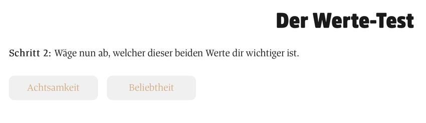 Auswahl zwischen zwei Werten auf https://einguterplan.de/werte-test