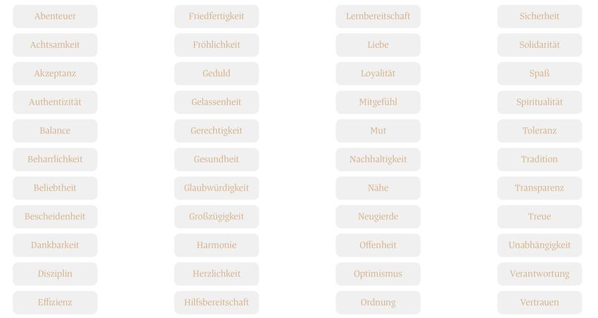 Auswahl der Werte von https://einguterplan.de/werte-test
