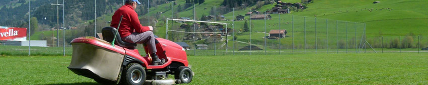 Eine fein säuberlich gezogene weisse Linie umsäumt das Fussballfeld.