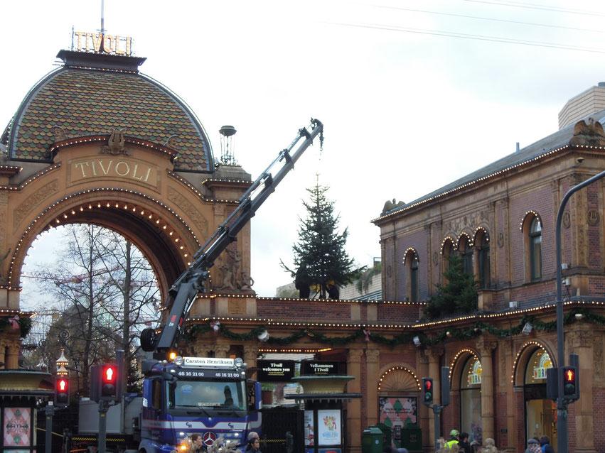 Baum am Platz – der Vergnügungspark Tivoli bereitet seine Weihnachtssaison 2019 vor. Foto: C. Schumann, 2019