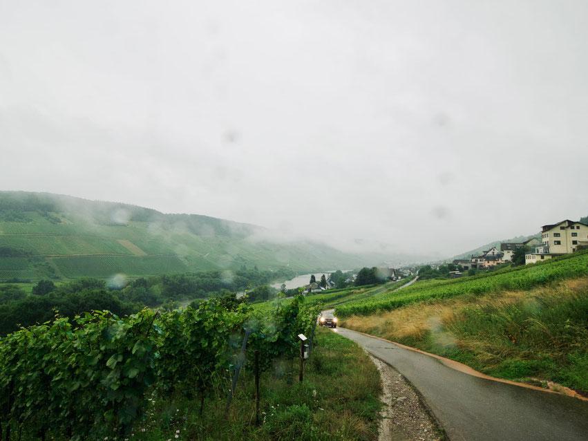 Reil an der Mosel bei Regen