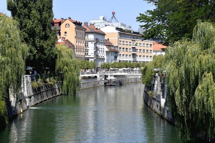 Sightseeing Ljubljana