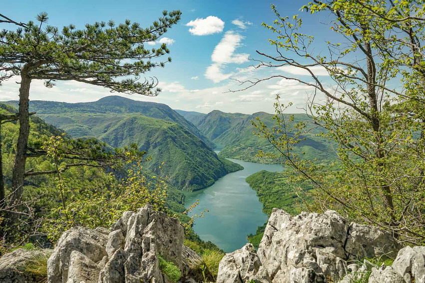 Balkan Roadtrip Serbien Tara Nationalpark