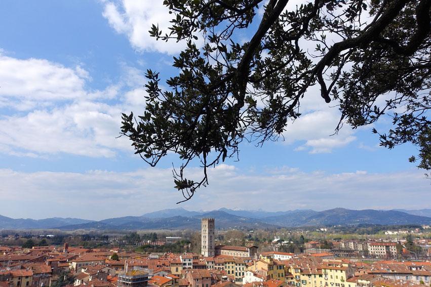 Roadtrip Italien Lucca