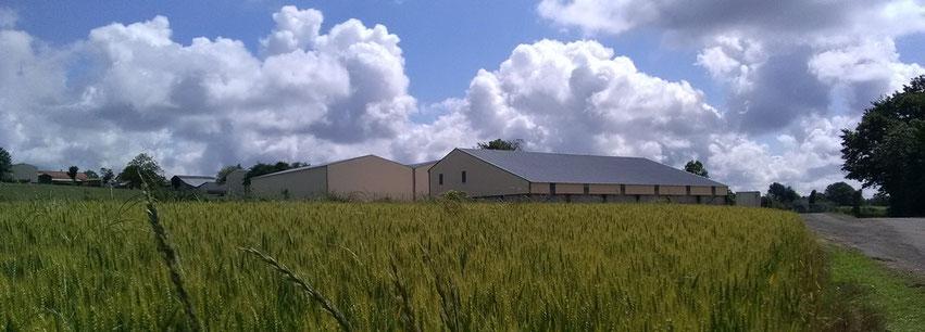 panoramique bâtiments Guérin réalisés par ACMB constructeur métallique en Poitou Charentes