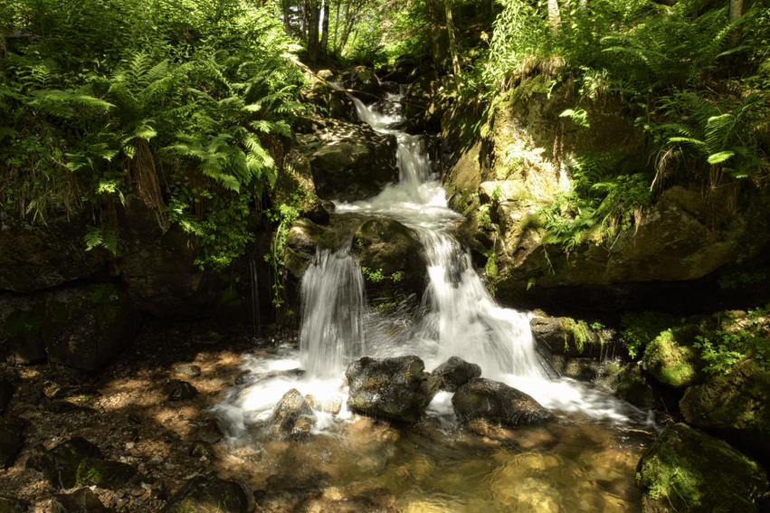 Todtnauer Wasserfallsteig