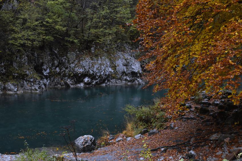 Montenegro Rundreise Tara Canyon
