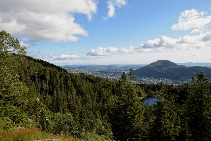 Aussichtspunkt wandern Fløyen