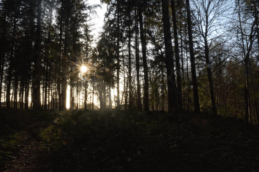 wandern Niedersachsen Nordpfade