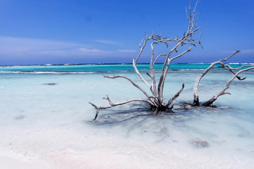 Strand-Aruba