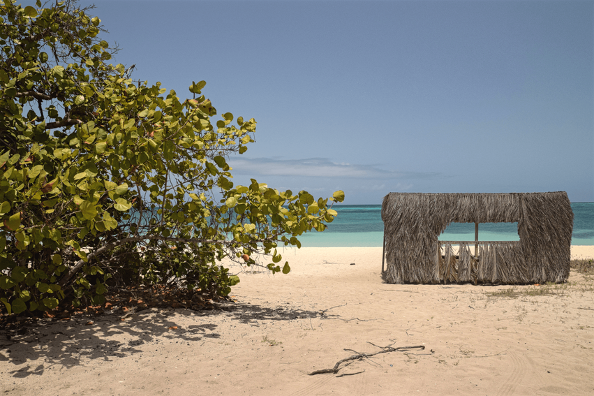 Aruba Roger's Beach