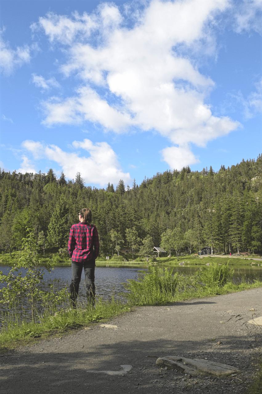 Wandern Bergen Fløyen Panoramaroute
