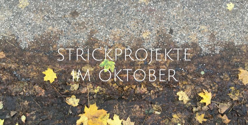 Strickprojekte im Oktober FLCTY