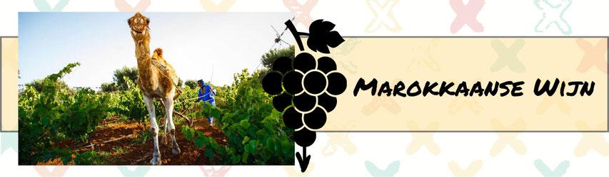 Marokkaanse Wijn Banner