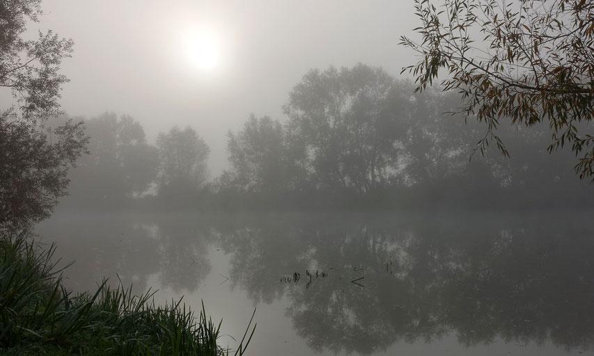 Der Fluss Meuse bei Verdun