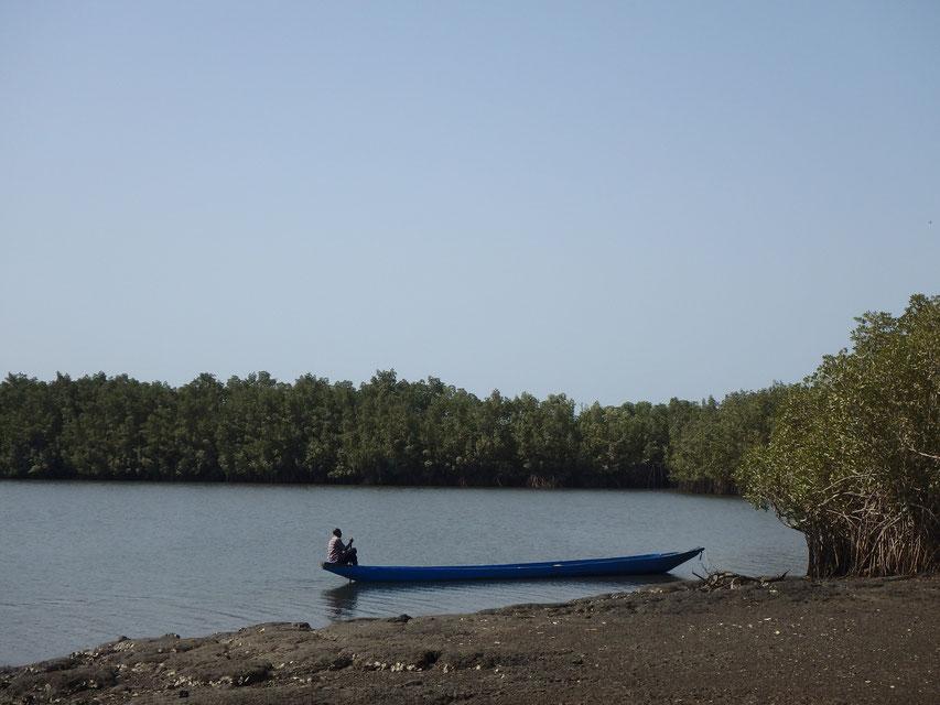 dug-out canoe