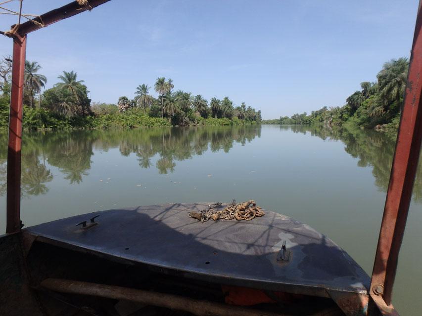 River Gambia boat trip Janjanbureh