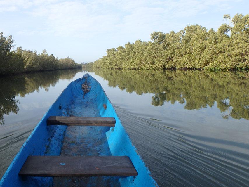 boat trip, Tumani Tenda, Gambia - dug out canoe
