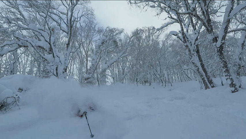 Niseko-backcountry-ski-guide