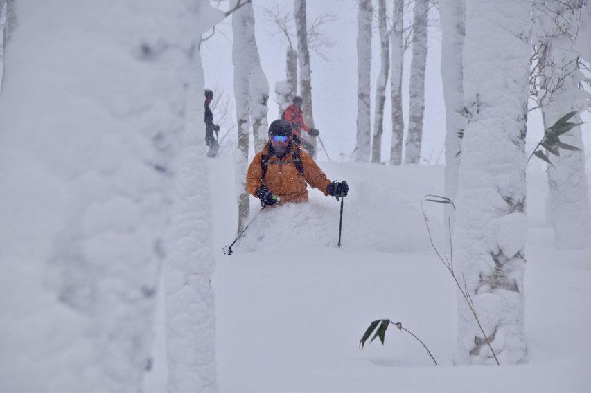 Hokkaido-backcountry-ski-guide