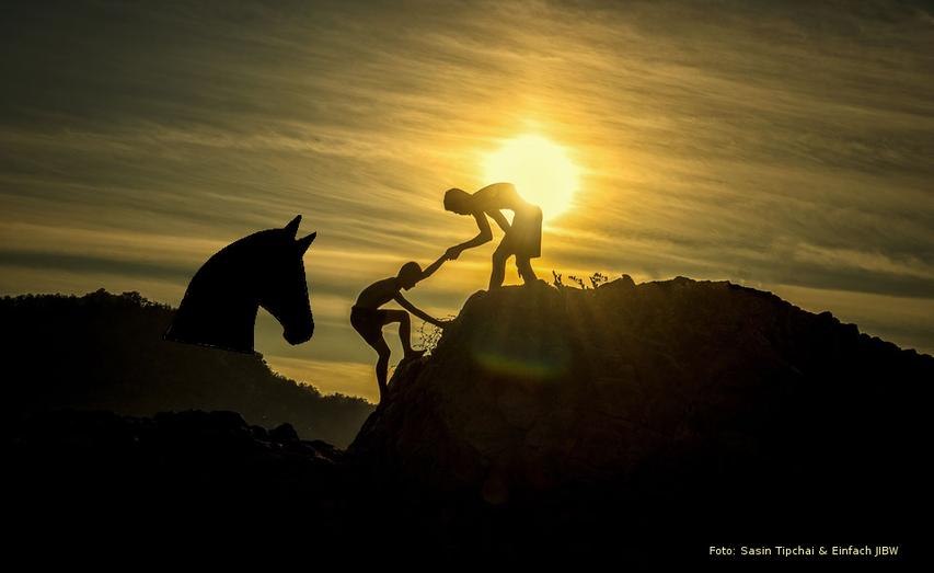 Unterstützung mit Hilfe von Pferden und Menschen!