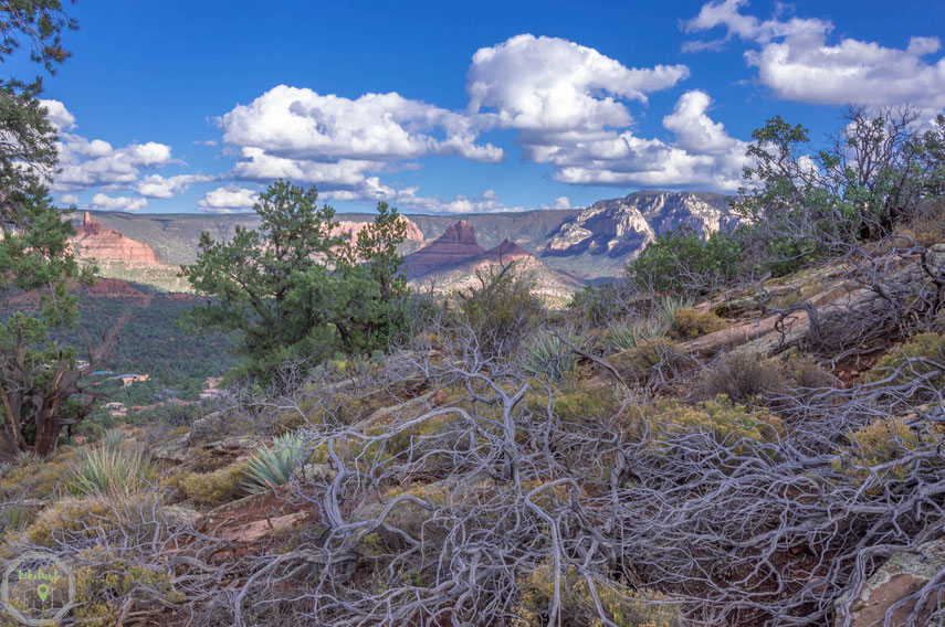 Sedona Sugarloaf Mountain Arizona