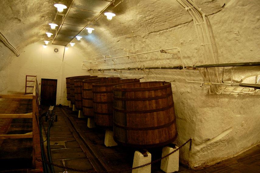 Исторические подвалы в пивоварне Pilsner